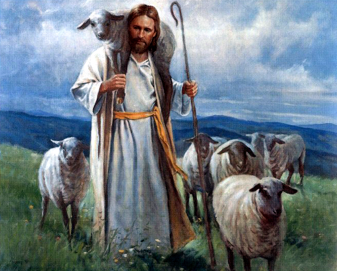Image result for pics of the good shepherd